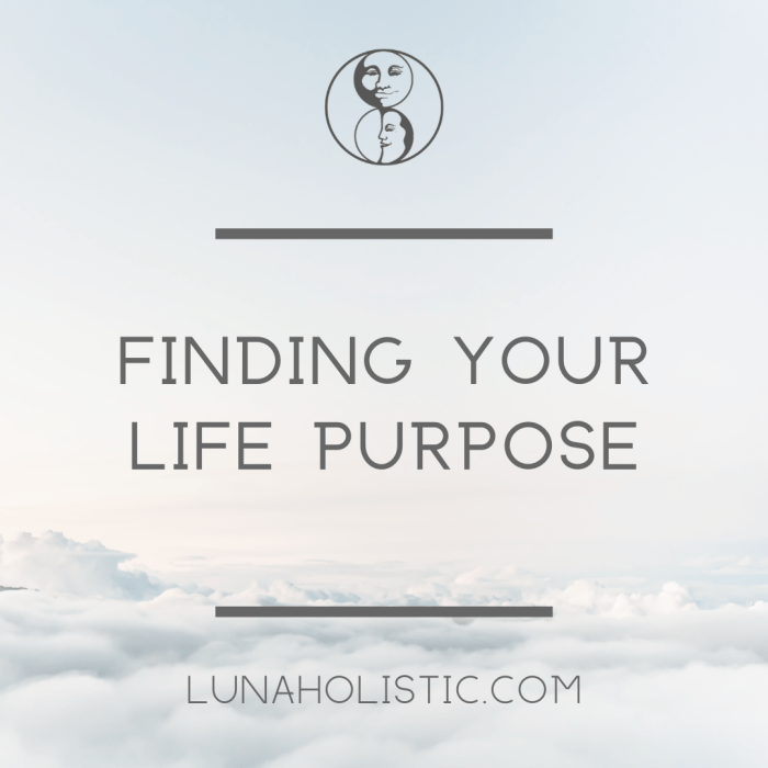 Finding Your Life Purpose - Podcast - LunaHolistic.com