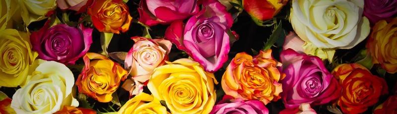 К чему снятся Цветы
