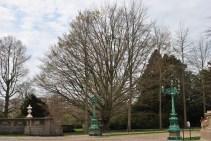 Breakers tree
