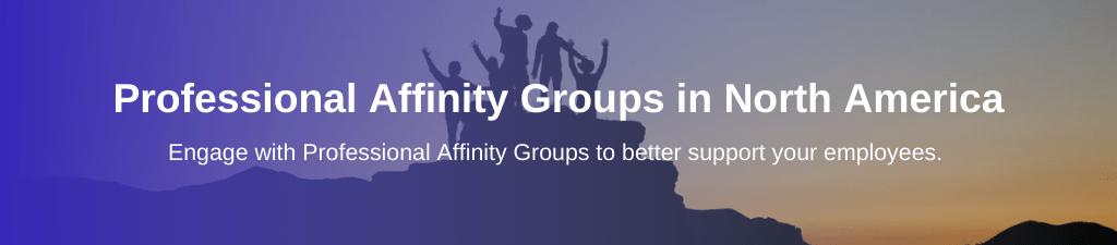 Image of people standing on top of rock together with overlay text: Professional Affinity Groups in North America
