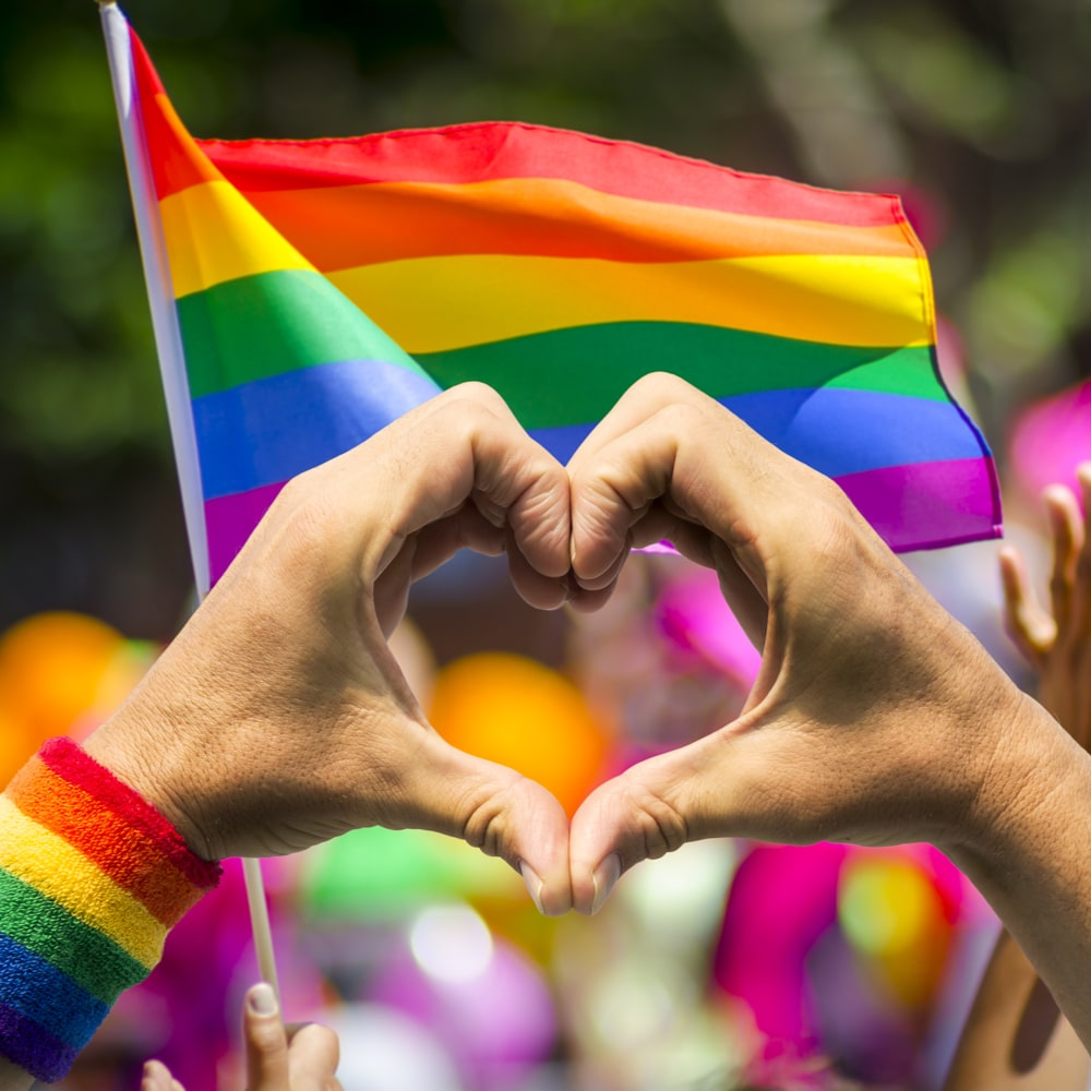 Two white hands shaped as hearts in front of Pride flag