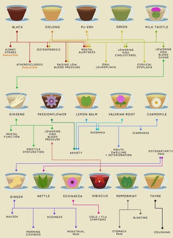 Biohacking: The Advantages of Different Teas