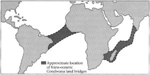 Approximate location of tran-oceanic Gondwana land bridges