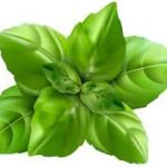 Group logo of Herbs Club