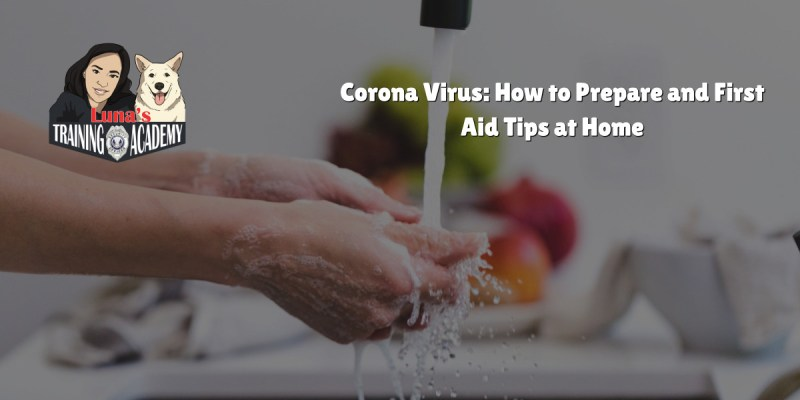 Corona Virus: How to Prepare and First Aid Tips at Home