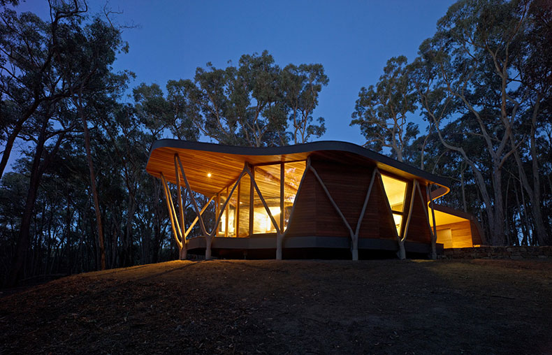 Trunk House Modern Bush House Built With Trees From Site
