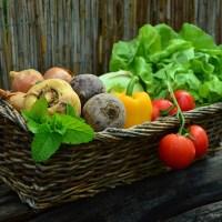 El beneficio de las verduras, las frutas y la fibra en la microbiota intestinal