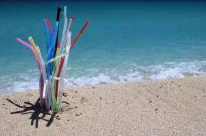 straws at the beach
