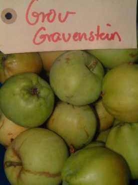 Grov Gravenstein