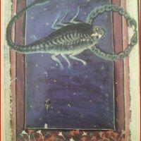 Huitième étape des travaux d'#hercule sous le #signe du #Scorpion