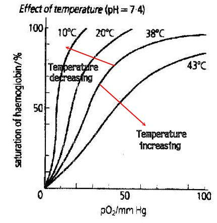 If the temperature is lower, the solubility of oxygen will