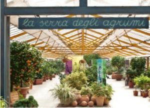 Floricoltura Chiaravalli  Luoghi ItalianBotanicalTrips