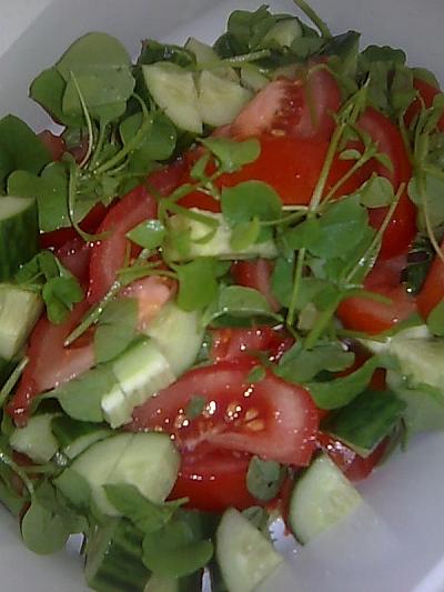 Vesiheinä-tomaatti-kurkku salaatti