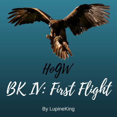 HoGW BK IV: First Flight