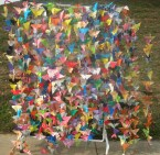 1000-butterflies