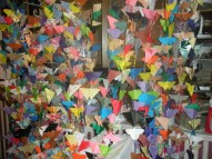 butterfly-curtain-production-wall