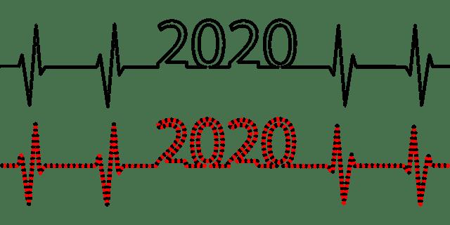 2020 Pulse