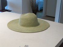 Title: My Hat Caption: My hat is my head and face protection from the sun and its ultraviolet rays. Photographer: Elaine