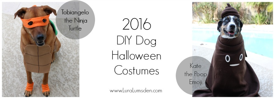 Dog costumes EASY diy