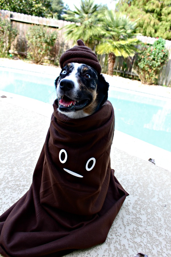 Poop Emoji costume for dogs easy diy