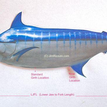 The Fish Weight Formula