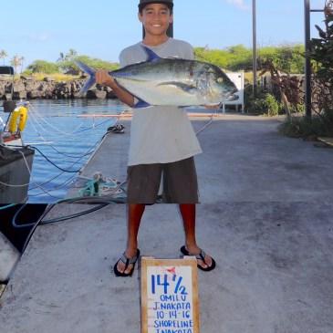 Bluefin, yellowfin, blue marlin in Kona report