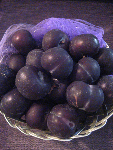 sweet juicy plums, waiting become a Luscious dessert