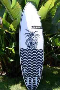 superbrand surfboards pig dog