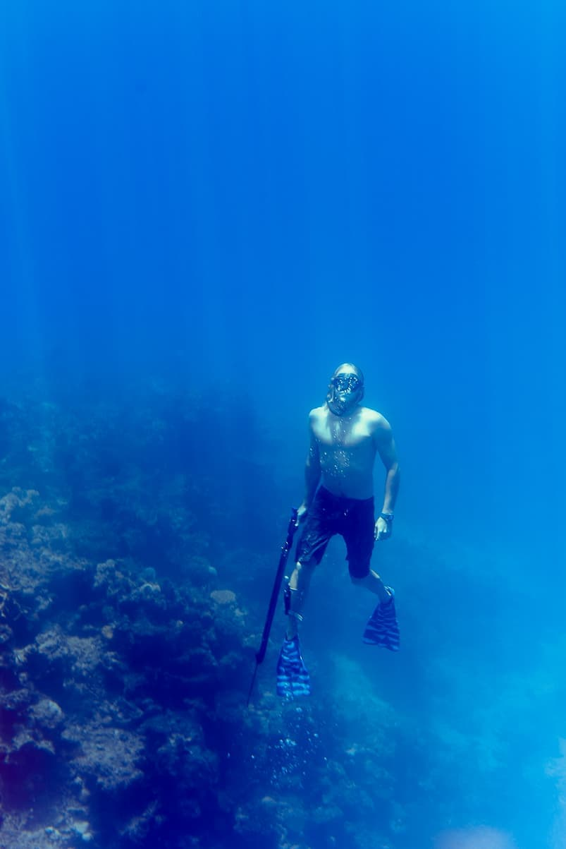 fiji freediving