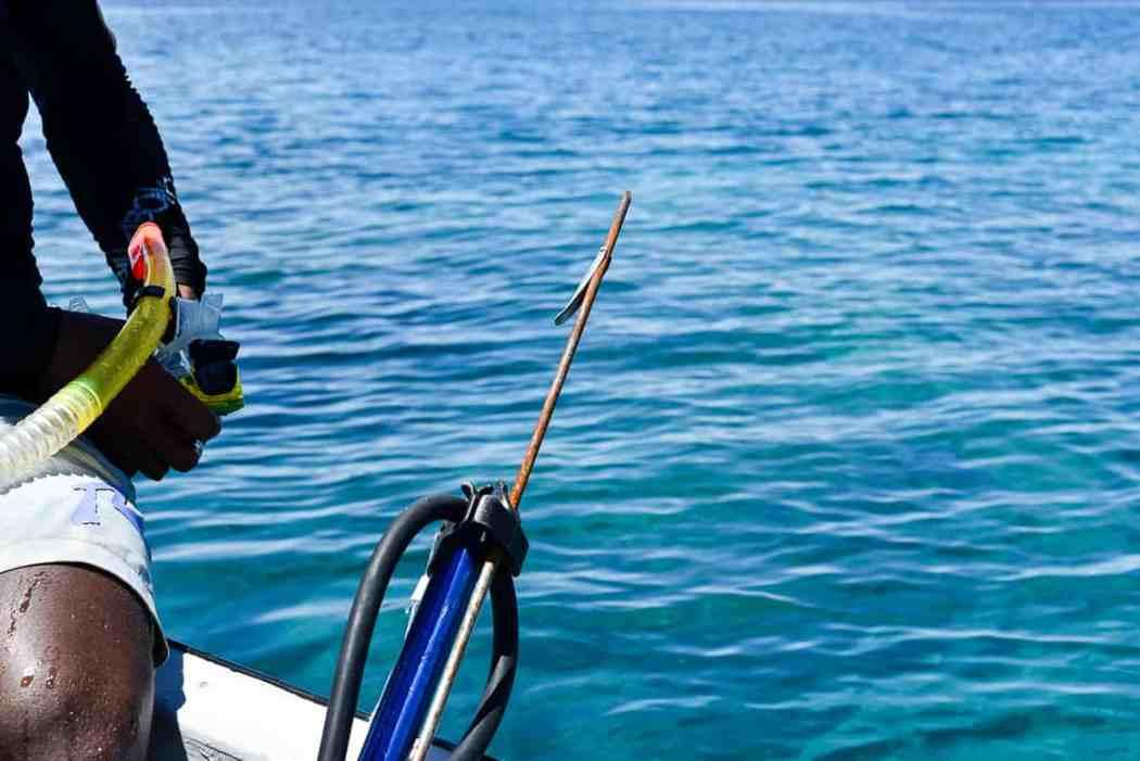 fiji spearfishing