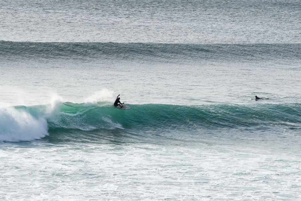 lush palm surf blog