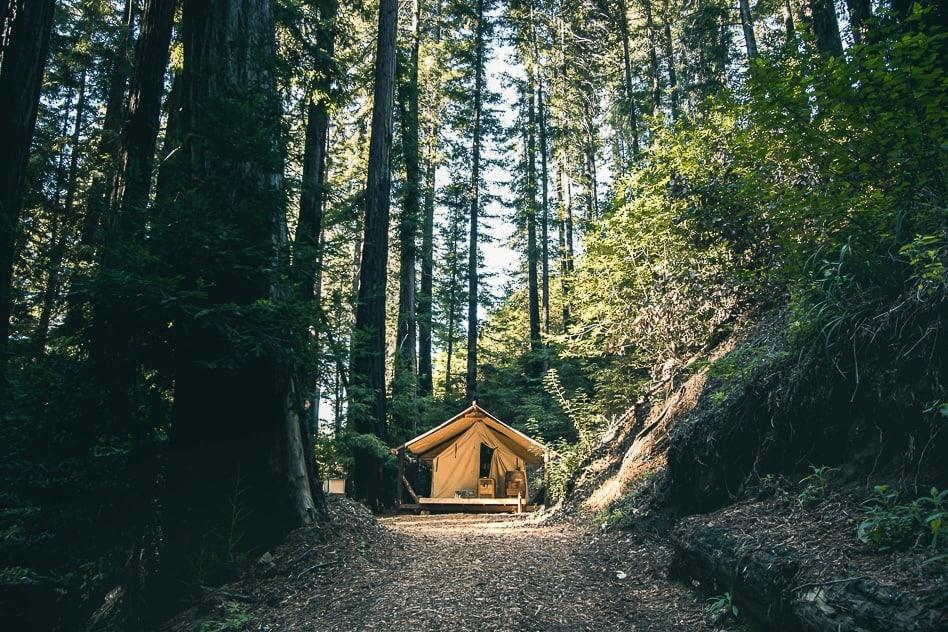 Camping in California / Big Sur