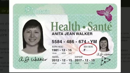 Health Card Renewal Canada, Everything You Need to Know about Health Card Renewal Canada