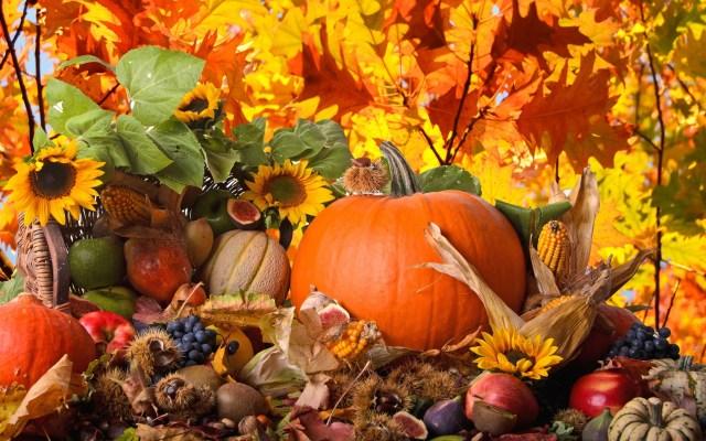30_thanksgiving