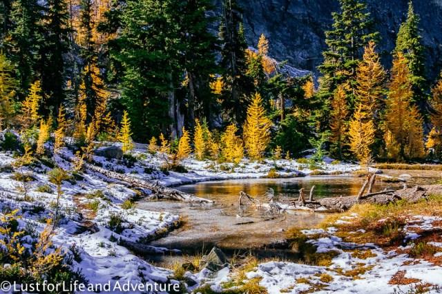 north-cascades-173