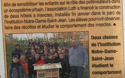 Pose des hôtels à insectes à l'institution Notre Dame