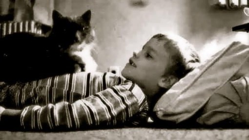 My animal-loving Littlest Brother Doug, pictured here with Major, the World's Smartest Cat (who probably would have done a number on those mice, too, given the chance)