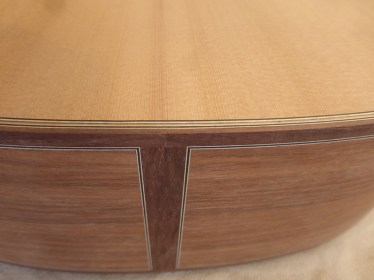 Guitare Engelbrecht 9