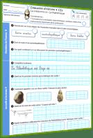 préhistoire évaluation paléolithique