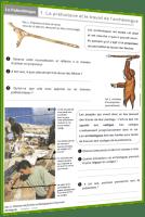 préhistoire dossier 1