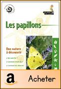 les-papillons-baliteau