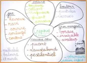 enseigner le vocabulaire fleur.png