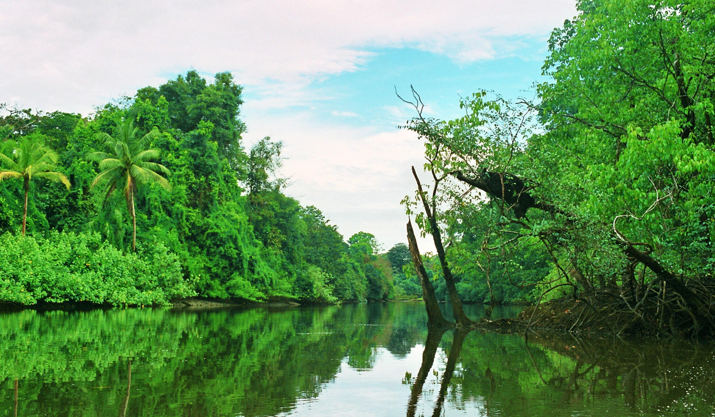 delta řeky Sirena