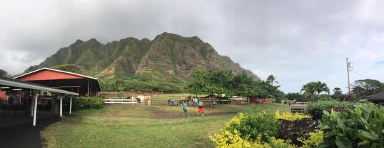 Kualoa Ranch 12