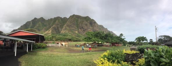 Kualoa Ranch 12