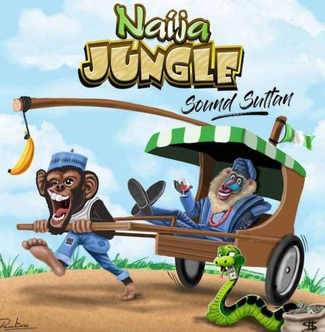 Sound Sultan – Naija Jungle Mp3 Download