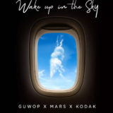 Wake Up In The Sky mp3 download