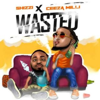Wasted mp3 download