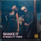 D'Banj Shake It mp3 download