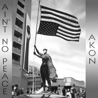 Akon Ain't No Peace download